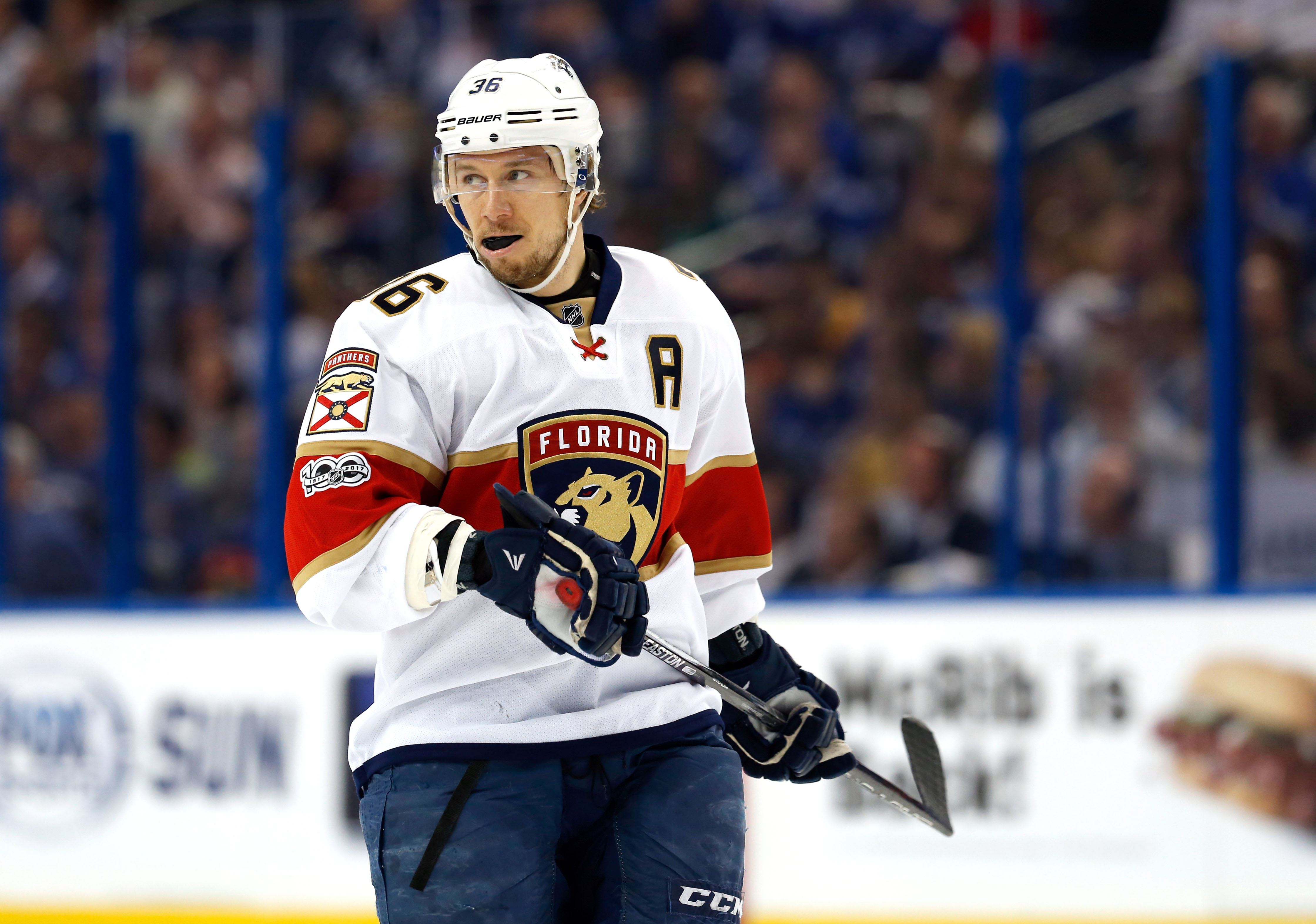 """6f355b878 The Pisani"""" has landed – OILERSNATION"""